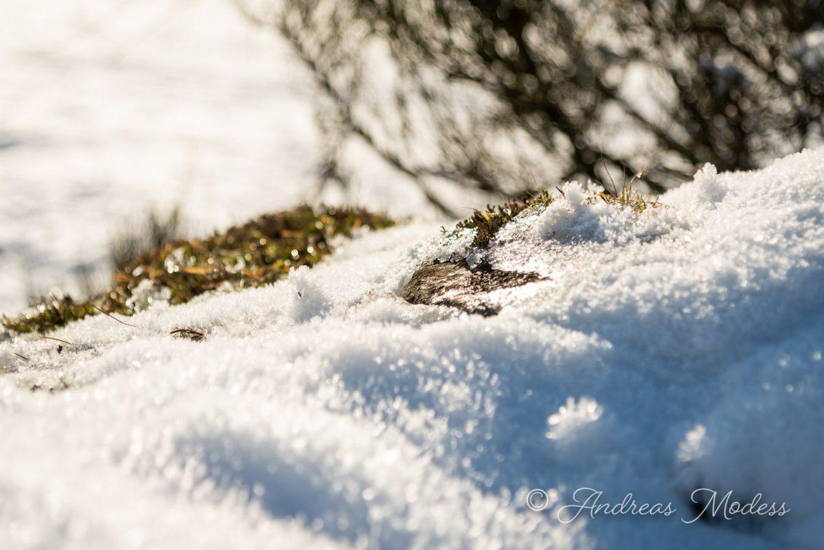 Snö i Skåne